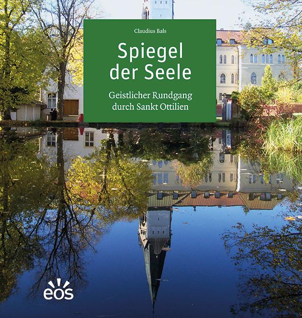 Spiegel der Seele (ebook)